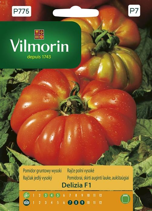 pomidor gruntowy wysoki Delizia F1 P775